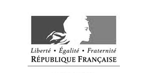 Logo_RFrancaise